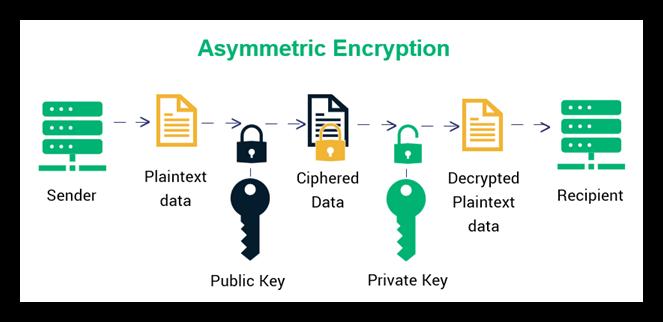 kriptografi enkripsi asimetris yang menggunakan dua unit kunci dengan masing-masing tugas untuk enkripsi dan dekripsi